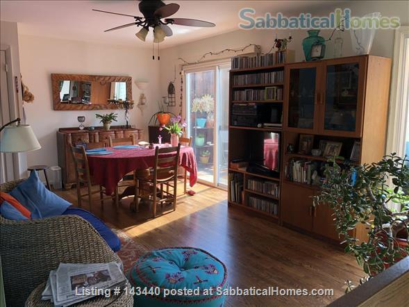 Peaceful Sunny Suburban Washington DC Escape - close to Metro Home Rental in Silver Spring, Maryland, United States 3