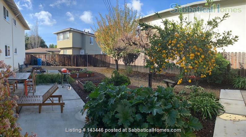 Close to Stanford and Very Cute - 1 bedroom / 1 bath - Sunny Backyard Home Rental in Menlo Park, California, United States 2