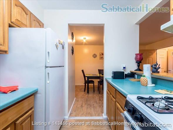 Apartment or Room to Rent Home Rental in Ocean Hill, New York, United States 3