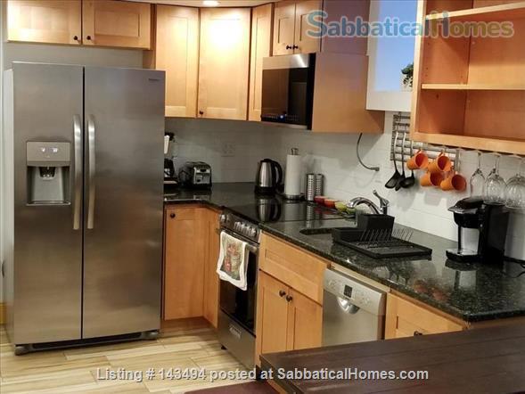 Modern 1BR furnished Apt in Prime Brookline Location Home Rental in Brookline, Massachusetts, United States 1