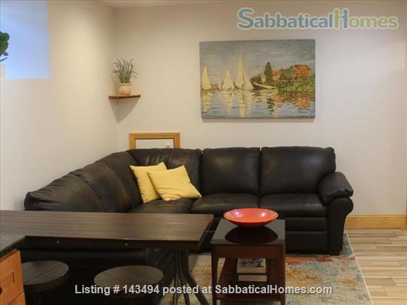 Modern 1BR furnished Apt in Prime Brookline Location Home Rental in Brookline, Massachusetts, United States 0