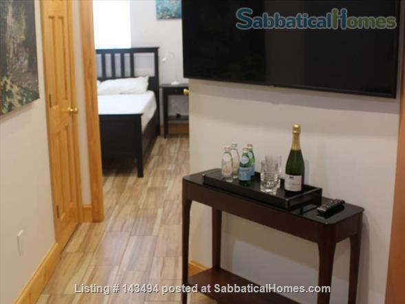 Modern 1BR furnished Apt in Prime Brookline Location Home Rental in Brookline, Massachusetts, United States 2