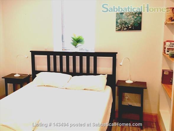 Modern 1BR furnished Apt in Prime Brookline Location Home Rental in Brookline, Massachusetts, United States 3