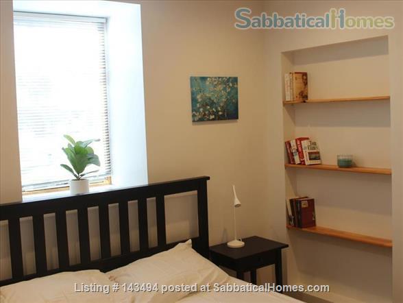 Modern 1BR furnished Apt in Prime Brookline Location Home Rental in Brookline, Massachusetts, United States 4