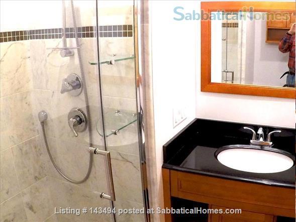 Modern 1BR furnished Apt in Prime Brookline Location Home Rental in Brookline, Massachusetts, United States 5