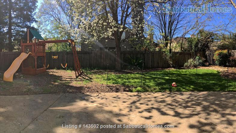 Beautiful 4 bedroom, 2 1/2 bath house with a garden, play structure, furnished  Home Rental in Davis, California, United States 4