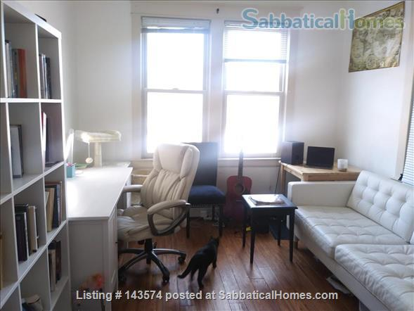 Subletting a 1B apartment (furnished) on Grand Avenue for the summer  Home Rental in St Paul, Minnesota, United States 1