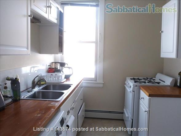 Subletting a 1B apartment (furnished) on Grand Avenue for the summer  Home Rental in St Paul, Minnesota, United States 0