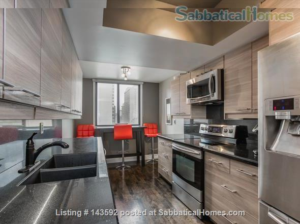 Downtown Toronto - Prime Location - Spacious Tastefully Furnished & Fully Equipped Home Rental in Toronto, Ontario, Canada 5