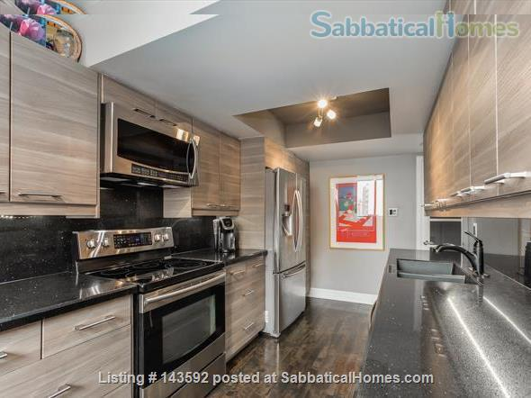 Downtown Toronto - Prime Location - Spacious Tastefully Furnished & Fully Equipped Home Rental in Toronto, Ontario, Canada 6