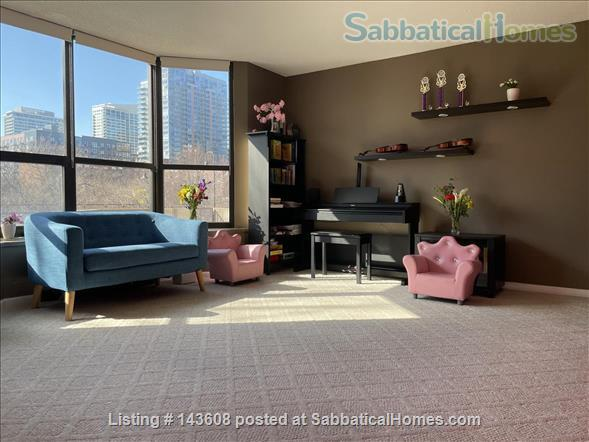 Dearborn park furnished apartment with gorgeous views. Walk to Grant Park, lakefront and  museums.  Home Rental in Chicago, Illinois, United States 1