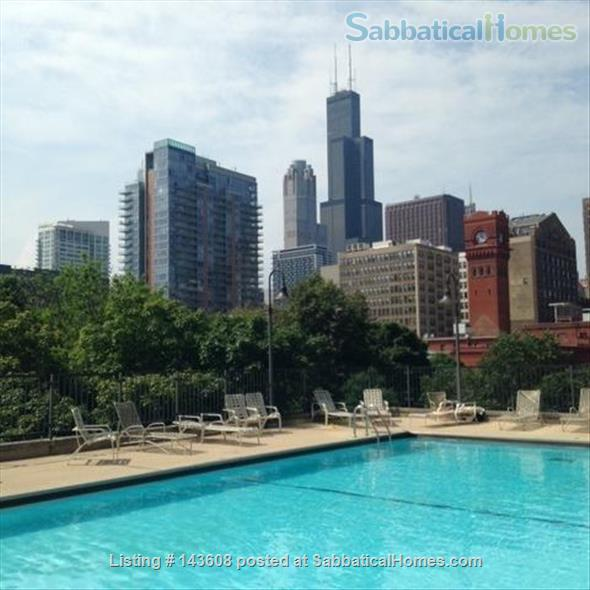 Dearborn park furnished apartment with gorgeous views. Walk to Grant Park, lakefront and  museums.  Home Rental in Chicago, Illinois, United States 0