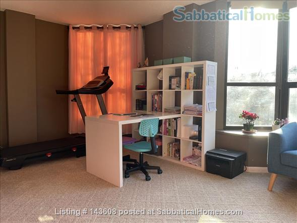 Dearborn park furnished apartment with gorgeous views. Walk to Grant Park, lakefront and  museums.  Home Rental in Chicago, Illinois, United States 3
