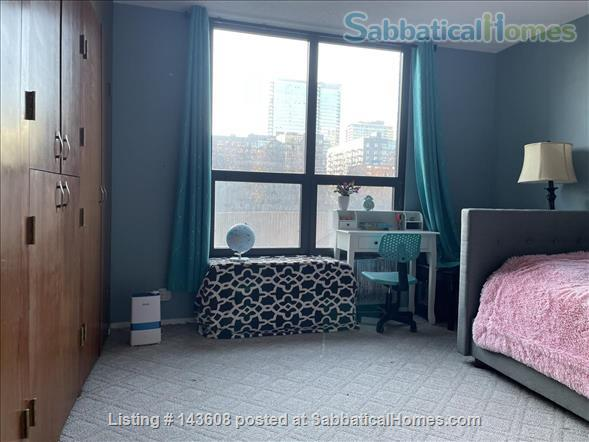 Dearborn park furnished apartment with gorgeous views. Walk to Grant Park, lakefront and  museums.  Home Rental in Chicago, Illinois, United States 4