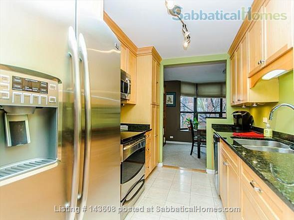Dearborn park furnished apartment with gorgeous views. Walk to Grant Park, lakefront and  museums.  Home Rental in Chicago, Illinois, United States 6