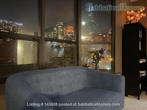 Dearborn park furnished apartment with gorgeous views. Walk to Grant Park, lakefront and  museums.  Home Rental in Chicago, Illinois, United States 8
