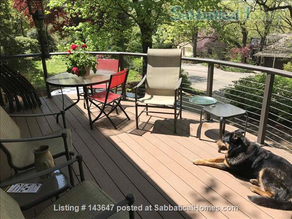 Urban Apartment in the Woods Home Rental in Madison, Wisconsin, United States 9