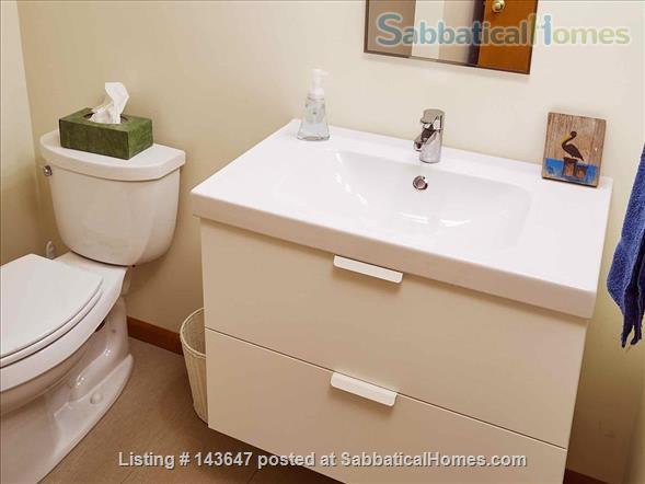 Urban Apartment in the Woods Home Rental in Madison, Wisconsin, United States 5