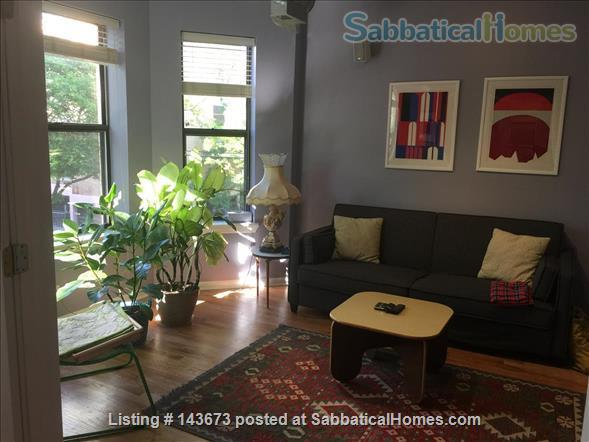 Nice 2 bedrooms fully furnished apartment in Edgewater, Chicago Home Rental in Chicago, Illinois, United States 1