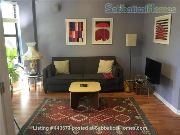 Nice 2 bedrooms fully furnished apartment in Edgewater, Chicago Home Rental in Chicago, Illinois, United States 0