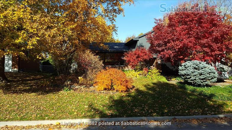 Furnished house, 4 bedrooms Home Rental in London, Ontario, Canada 0