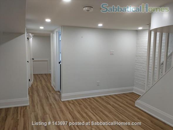 Newly Renovated Basement Apartment in Little Italy Home Rental in Toronto, Ontario, Canada 9