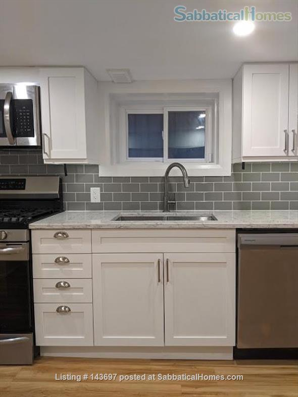 Newly Renovated Basement Apartment in Little Italy Home Rental in Toronto, Ontario, Canada 1