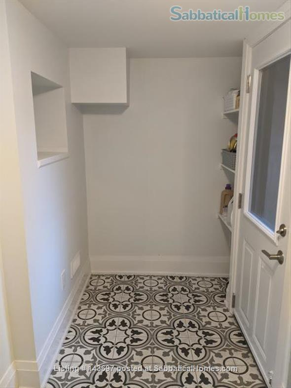 Newly Renovated Basement Apartment in Little Italy Home Rental in Toronto, Ontario, Canada 2