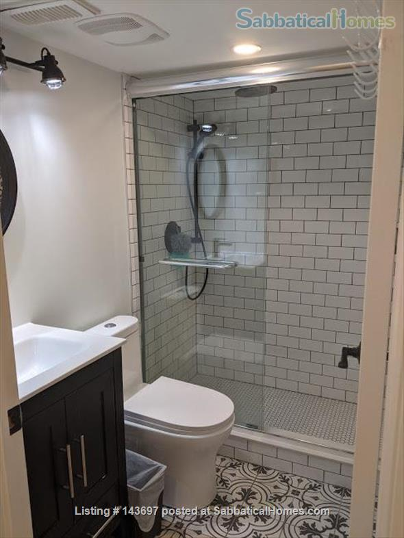 Newly Renovated Basement Apartment in Little Italy Home Rental in Toronto, Ontario, Canada 7