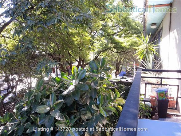 Historical Coyoacán - Beautiful, bright 2 Bed Flat, 04100 Mexico City, Ciudad de México Home Rental in Ciudad de México, Ciudad de México, Mexico 1
