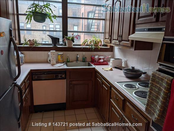 BEAUTIFUL 2-BEDROOM 2-BATHROOM IN THE BEST OF BACK BAY Home Rental in Boston, Massachusetts, United States 0