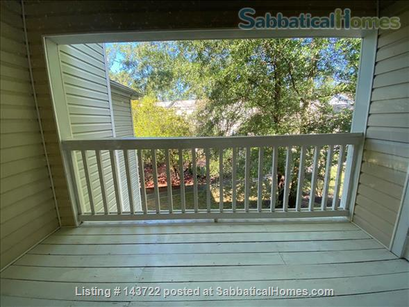 2 Bdrm 2 bath, updated, location, pool, tons of natural light Home Rental in Chapel Hill, North Carolina, United States 5
