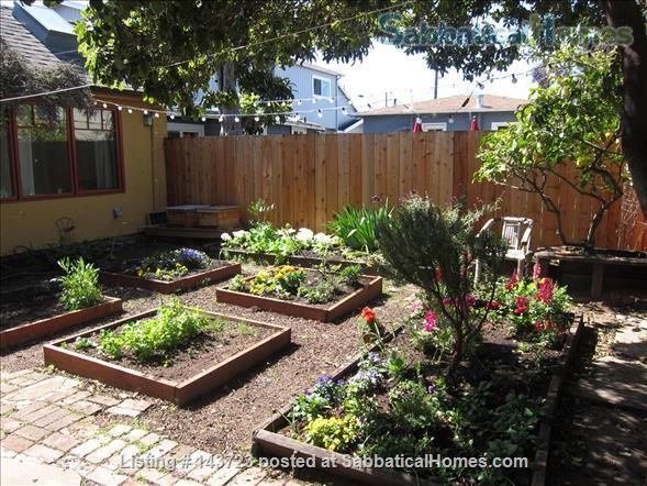 Sunny and Adorable Furnished 2-Bed Crafstman Home Rental in Berkeley, California, United States 0
