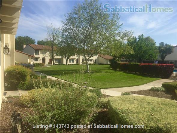 Delightful 2-bedroom home with pool  Home Rental in Davis, California, United States 7