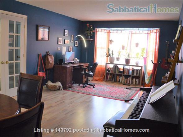 Modern, bohemian three bedroom home, 20 minute walk from Western University Home Rental in London, Ontario, Canada 2