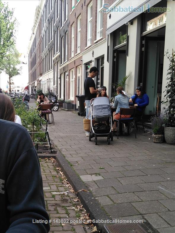 Ground floor apartment with garden  in De Pijp Home Rental in Amsterdam, Noord-Holland, Netherlands 5