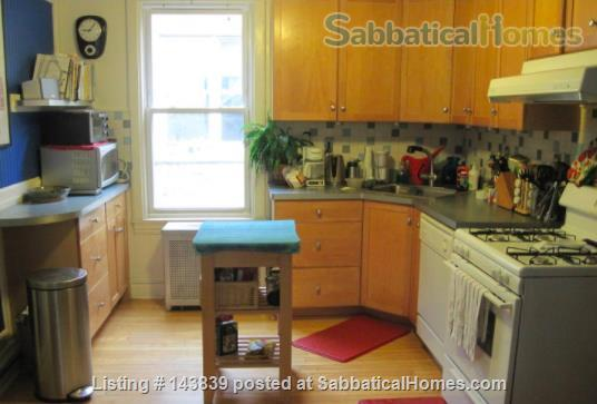 Cute + cozy furnished bungalow - the entire 1st floor is yours Home Rental in Chicago, Illinois, United States 4