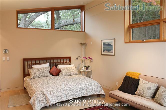 Modern Light-filled Remodeled Home  Home Rental in Berkeley, California, United States 9