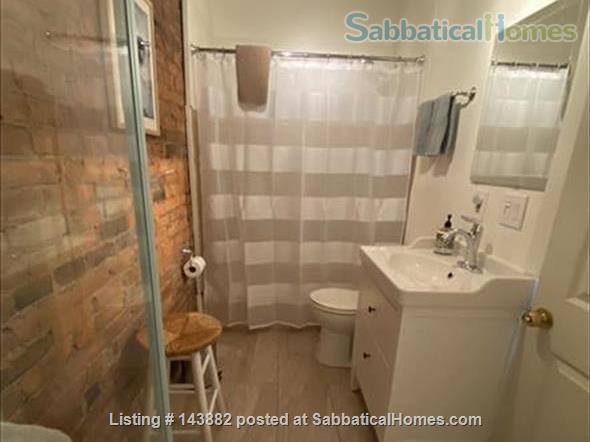 Centrally Located Loft Home Rental in New Haven, Connecticut, United States 5