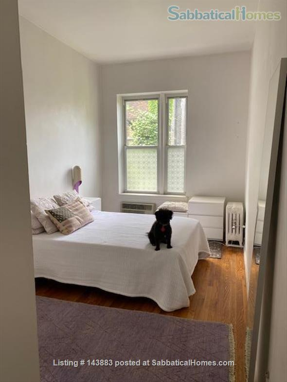Lovely $1990 Manhattan 1 bedroom  for sublet. East Gramercy, Peter Cooper Village area.  Home Rental in New York, New York, United States 2