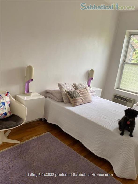 Lovely $1990 Manhattan 1 bedroom  for sublet. East Gramercy, Peter Cooper Village area.  Home Rental in New York, New York, United States 3