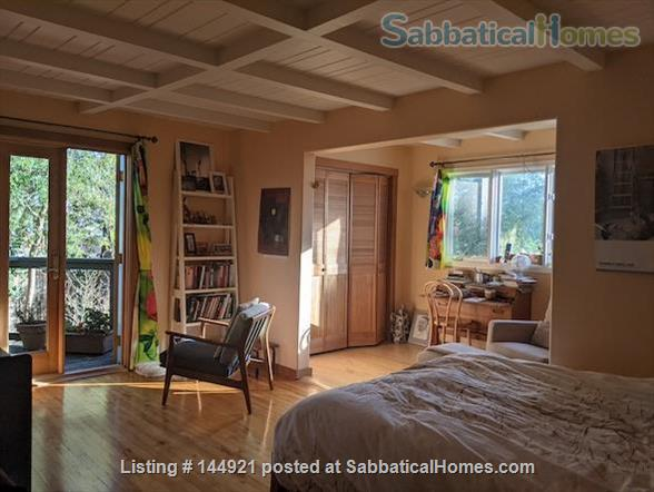 Light-filled, Spacious, Garden-setting Family home with Bay Views Home Rental in El Cerrito, California, United States 2