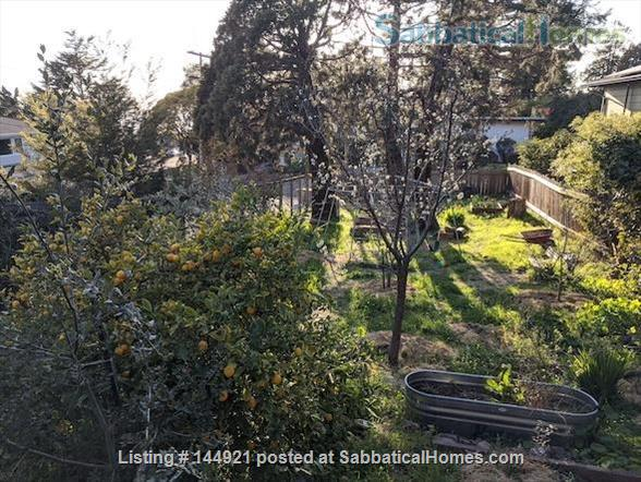 Light-filled, Spacious, Garden-setting Family home with Bay Views Home Rental in El Cerrito, California, United States 8