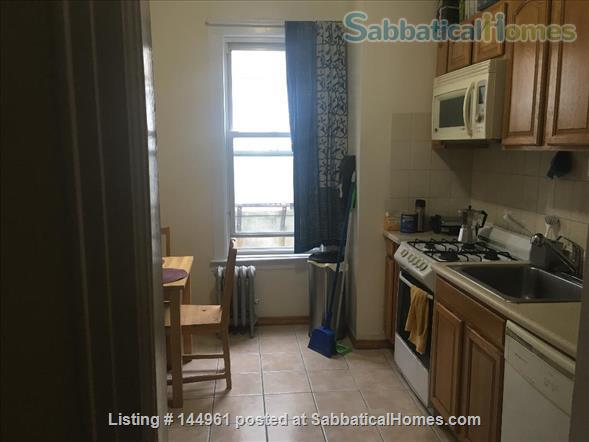Brooklyn Apartment to Rent Home Rental in Bay Ridge, New York, United States 3