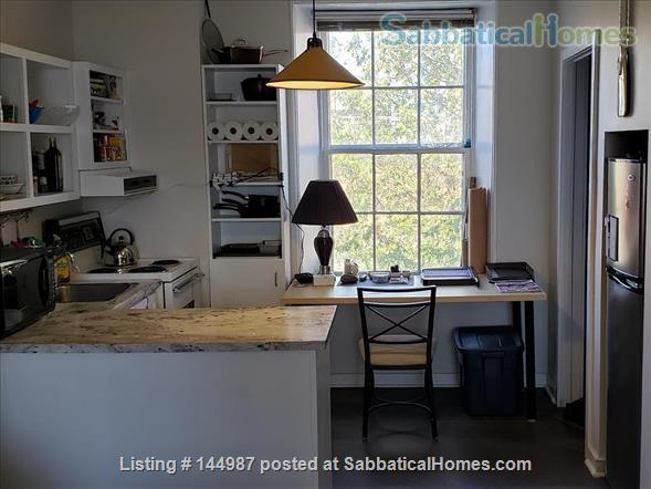 Bright 1 bedroom, hardwood floors Home Rental in Kingston, Ontario, Canada 1