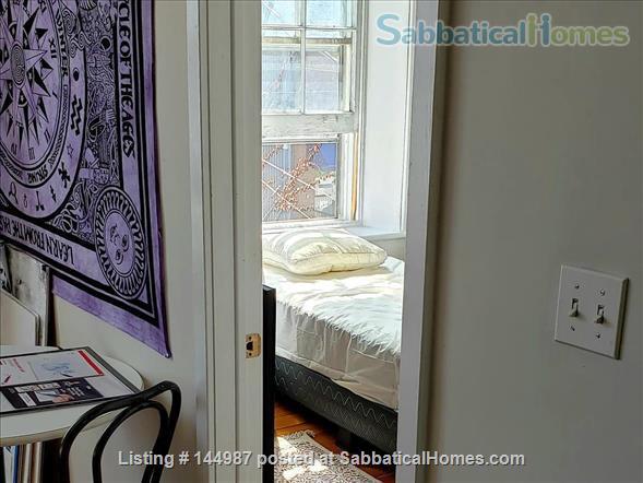 Bright 1 bedroom, hardwood floors Home Rental in Kingston, Ontario, Canada 2
