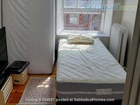 Bright 1 bedroom, hardwood floors Home Rental in Kingston, Ontario, Canada 3