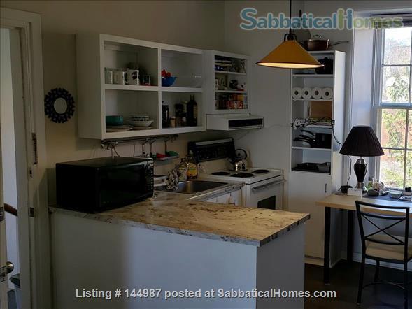 Bright 1 bedroom, hardwood floors Home Rental in Kingston, Ontario, Canada 4