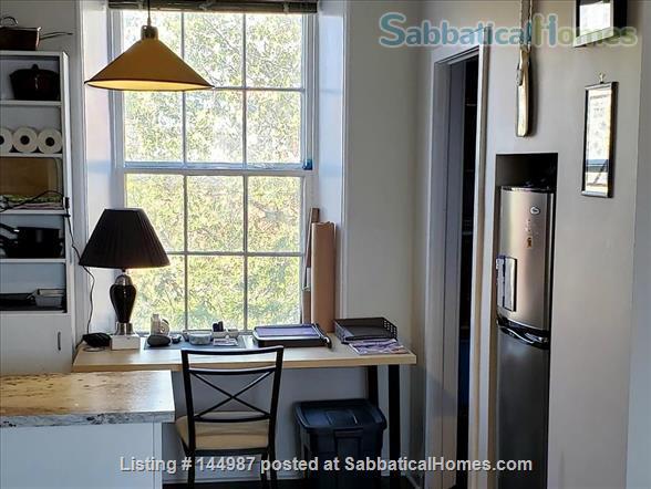 Bright 1 bedroom, hardwood floors Home Rental in Kingston, Ontario, Canada 5