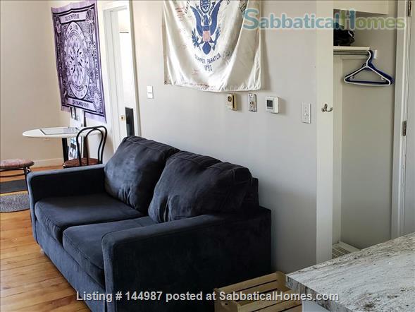 Bright 1 bedroom, hardwood floors Home Rental in Kingston, Ontario, Canada 6